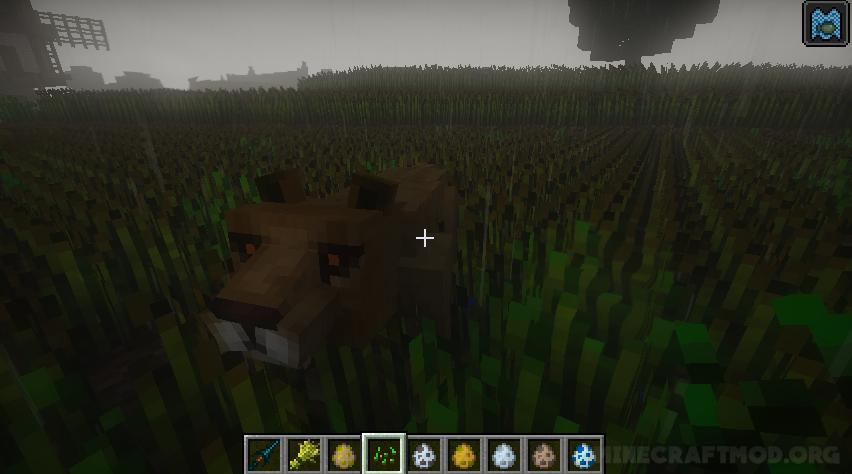 Mo Creatures Mod (1)