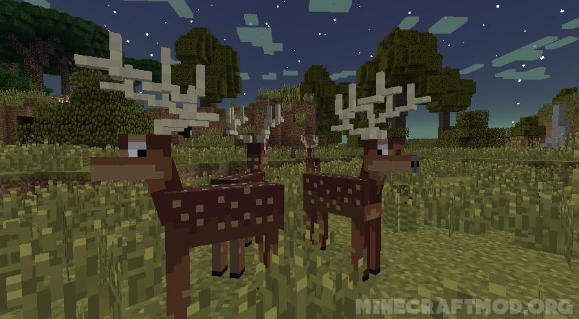 Twilight Forest Mod (6)
