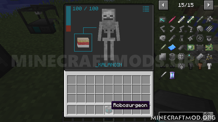 Cyberware Mod (3)