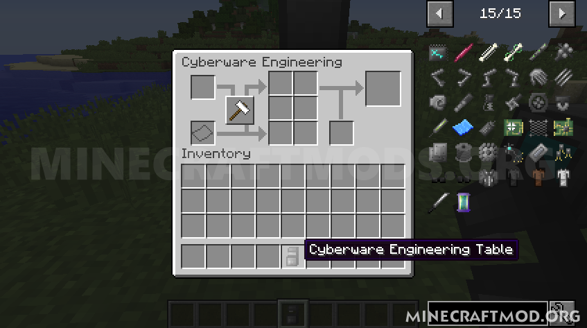 Cyberware Mod (5)
